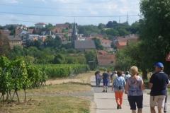 Duitsland Pfalz 2015 Dirk R